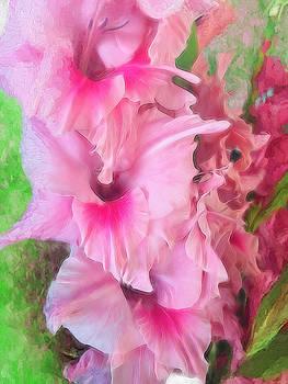Cindy Boyd - Light Pink Gladiolus