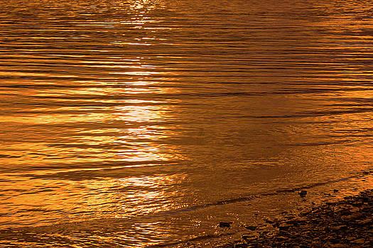 Light Reflection by Brady Lane