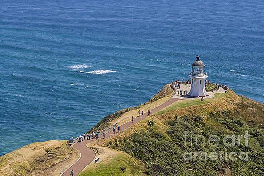 Patricia Hofmeester - Lighthouse cape Reigna New Zealand