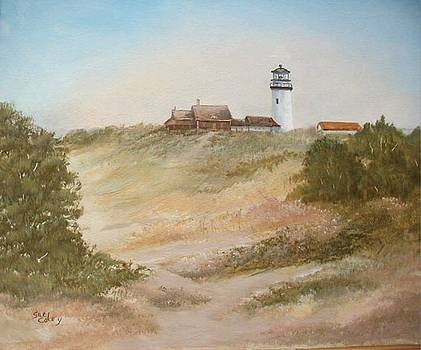Lighthouse Watch by Sue Coley