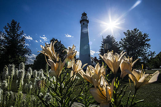 Lighthouse with a flowery foreground by Sven Brogren