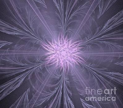 Lilac Gray Flower by Kim Sy Ok