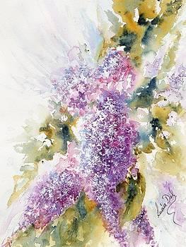 Lilacs by Lucia Del