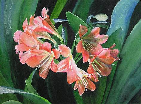 Lilies by Karla Horst