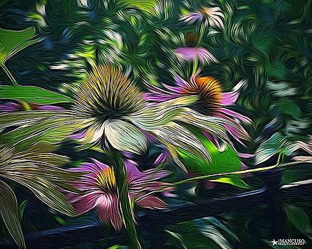 Lil's Garden by Phil Mancuso