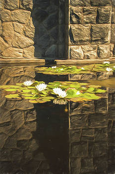 Marilyn Wilson - Zen Reflections - digitally painted