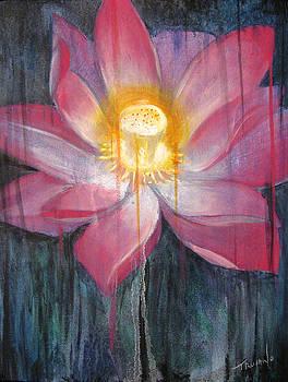 Lily by Matt Truiano