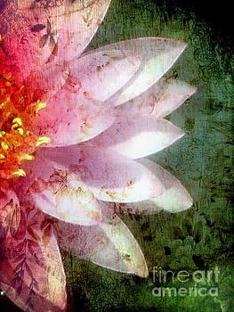 Andrea Kollo - Lily Pad Art