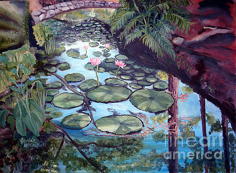Lily Pad Canal by Ecinja