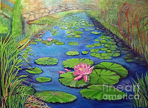 Water Lily Canal by Ecinja Art Works