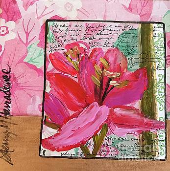 Lily Pink by Sherry Harradence