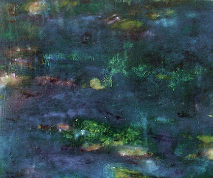Lily Pond 4 by Tolere