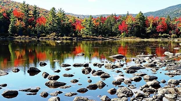 Lily Pond - Kancamagus Highway - New Hampshire by Joseph Hendrix