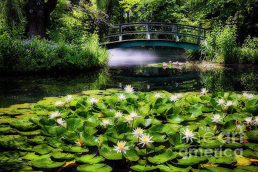 Lily Pond with a Footbridge by George Oze