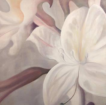 Lily Treasure by Karen Hurst