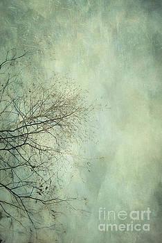 Limbs of a tree 3 by Priska Wettstein