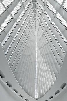 Lines and Light by Kim Hojnacki