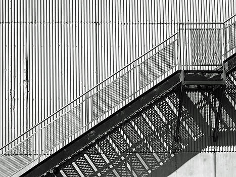 Lines and Shadows by Brooke T Ryan
