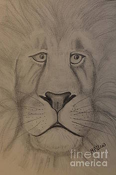 Maria Urso - Lion Drawing