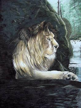 Lion by Fabio Turini