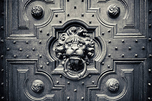 Adam Romanowicz - Lion Head Door Knocker