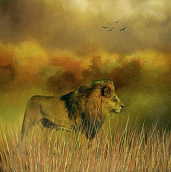 Lion in the Mist by Diane Schuster