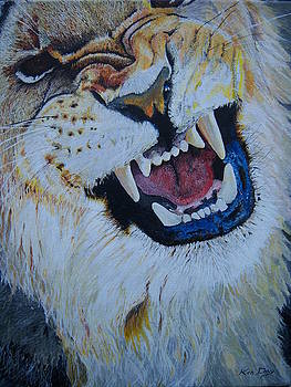 Lion Snarling by Ken Day