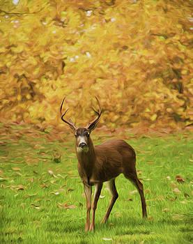 Marilyn Wilson - Majestic Deer - digitally painted
