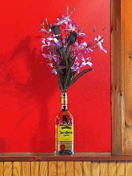 Nina Bradica - Liquor Bottle Vase-2