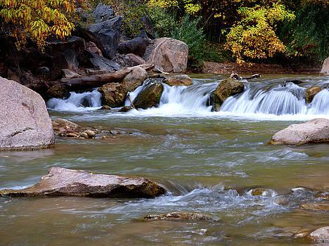 Little Autumn Waterfall by Marcia Socolik