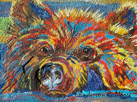 Anderson R Moore - Little Bear