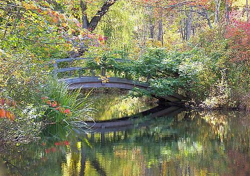 Little Bridge by Chris Burke