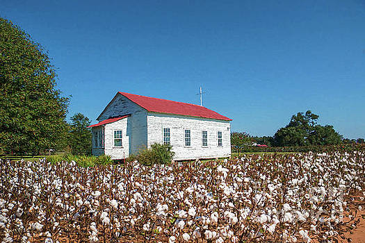 Little Church in the Cotton Field by Bonnie Barry