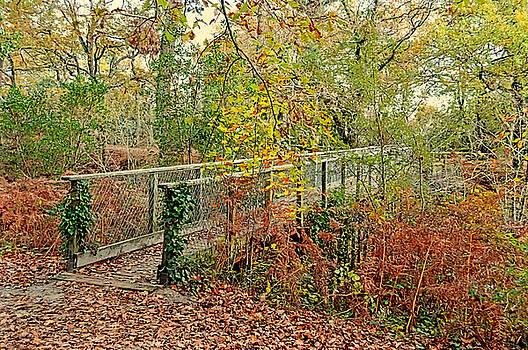 Little Footbridge 2 by Bishopston Fine Art