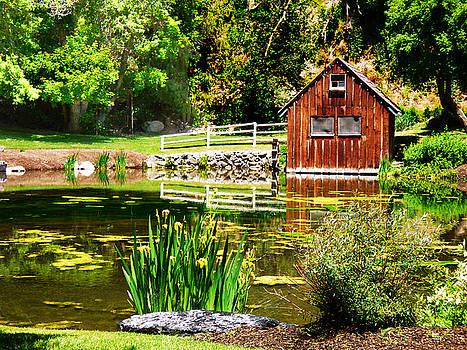 Little House by a Pond by Alan Socolik