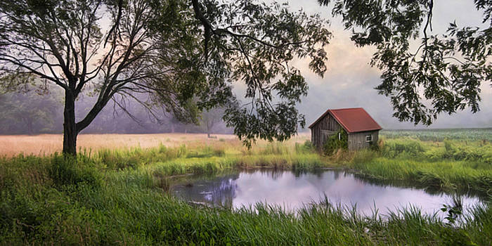 Little Pond by Robin-lee Vieira