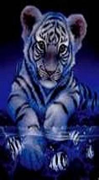 Little Tiger  by Robert Martin