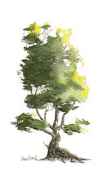 Little Tree 18 by Sean Seal