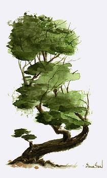 Little Tree 6 by Sean Seal