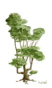 Little Tree 8 by Sean Seal