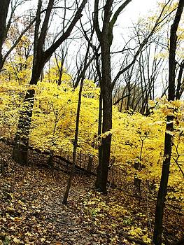 Little Yellow Trees by Anna Villarreal Garbis