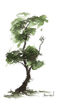 Little Zen Tree 169 by Sean Seal