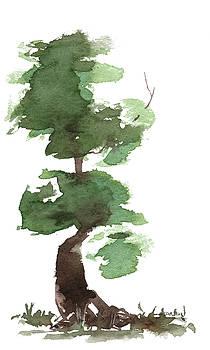 Little Zen Tree 170 by Sean Seal