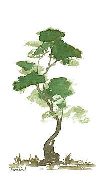 Little Zen Tree 180 by Sean Seal