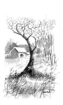 Little Zen Tree 1832 by Sean Seal