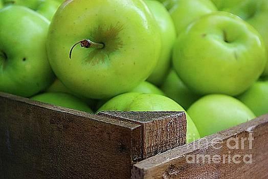 Litttle Green Apples by John S