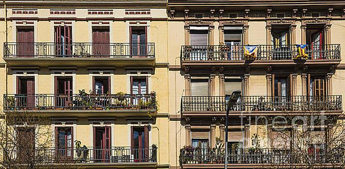 Svetlana Sewell - Living in Barcelona