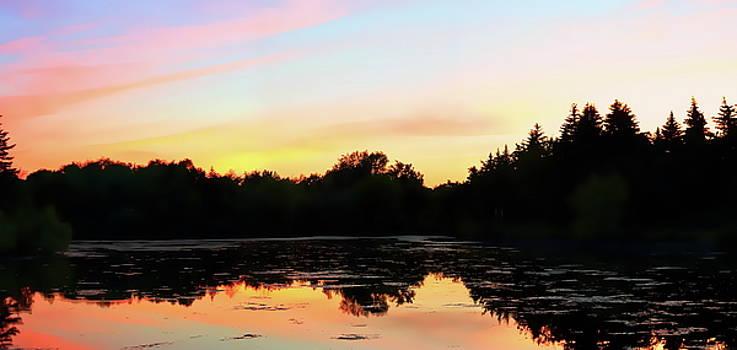 Loafers Lake by Irfan Gillani