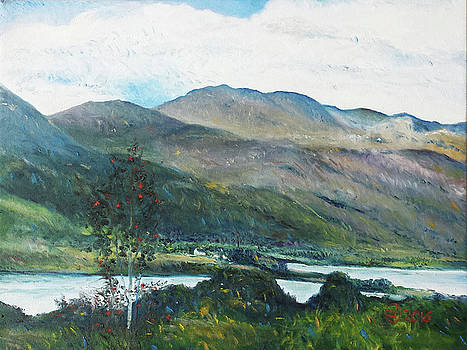 Loch Dun Luiche Donegal Ireland 2916 by Enver Larney