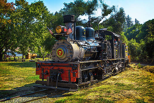 Locomotive Number Seven by Garry Gay